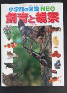 飼育と観察(表紙)