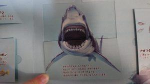 あぶないいきもの(口を広げたサメ