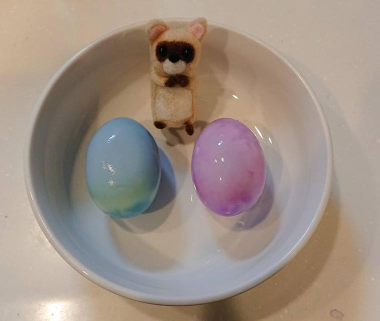 1時間放置した紫キャベツ液の卵
