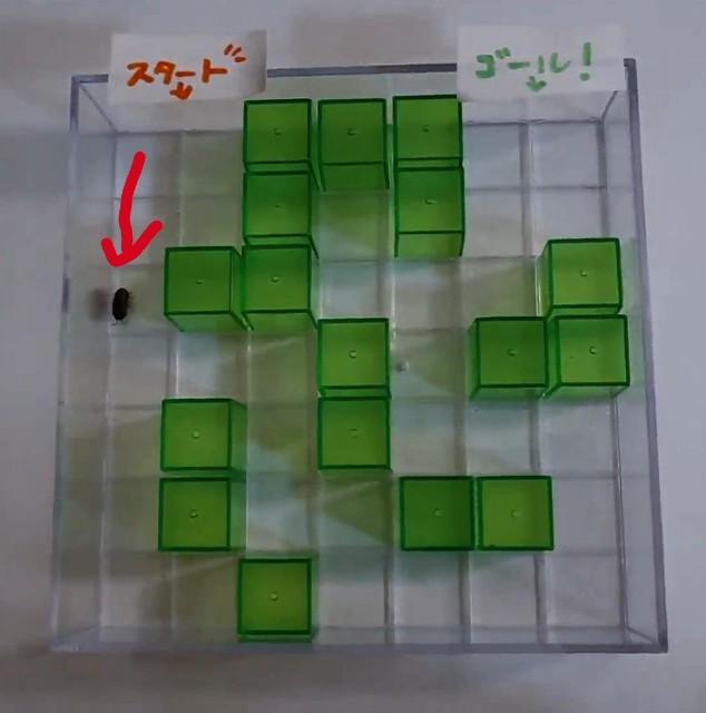 f:id:ziyukenkyu_Lab:20200524070917j:image