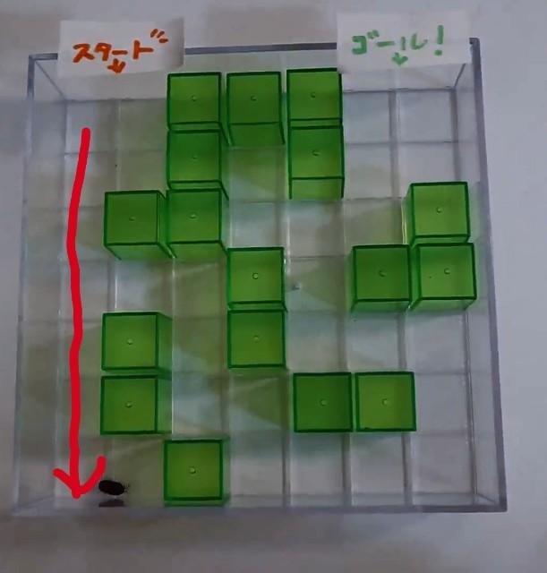 f:id:ziyukenkyu_Lab:20200524070927j:image