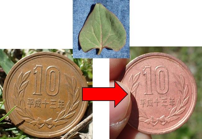 方法 を 10 に 円 玉 ピカピカ する