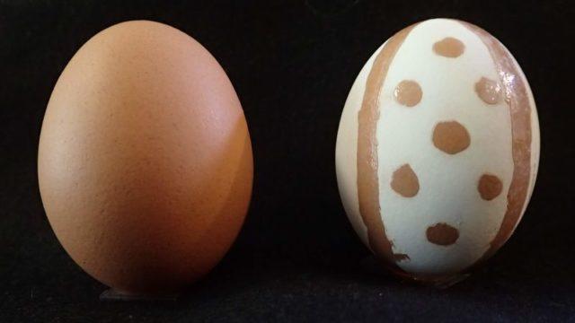 模様付きの卵